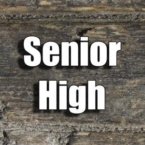 Senior High
